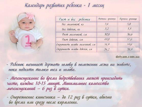 Воспитание детей от 1 до 2 лет - советы психолога