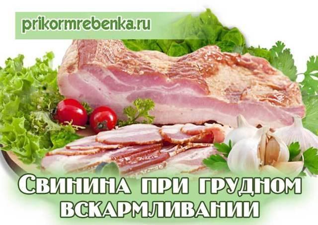 Можно ли сало при грудном вскармливании: свинина кормящей маме с рецептами