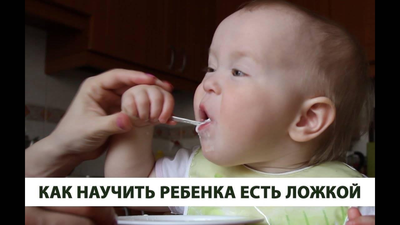 Как научить ребенка кушать ложкой без помощи взрослых: советы доктора комаровского