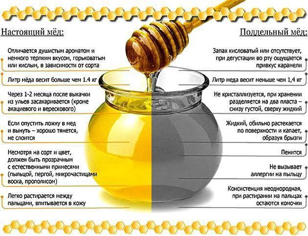 Мёд во время беременности — незаменимый источник энергии