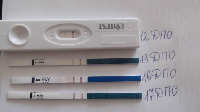 Болит живот за неделю до месячных - может ли быть беременность: и за несколько дней до начала менструаций