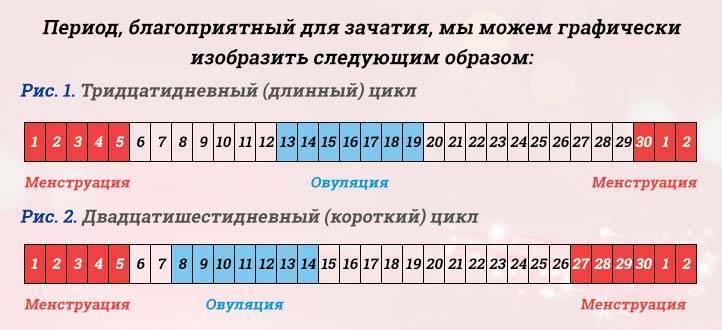 Можно ли забеременеть с первого раза, какова вероятность / mama66.ru