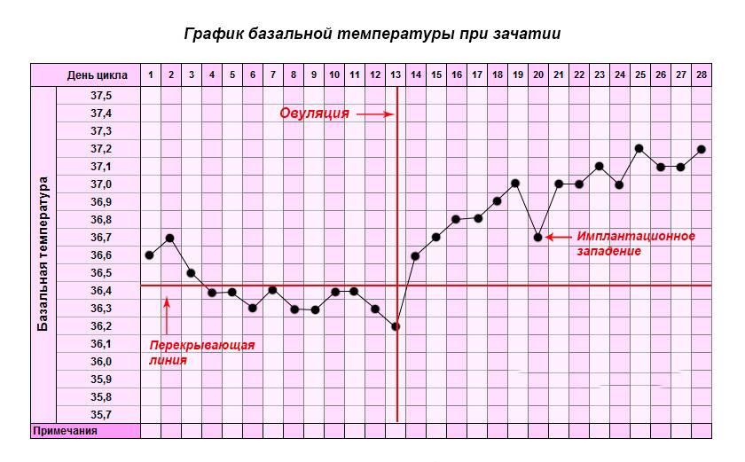 Температура перед месячными: может ли повышаться?