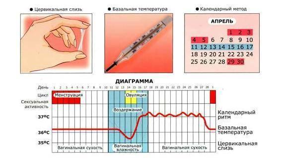Возможно ли забеременеть во время задержки месячных - onji.ru