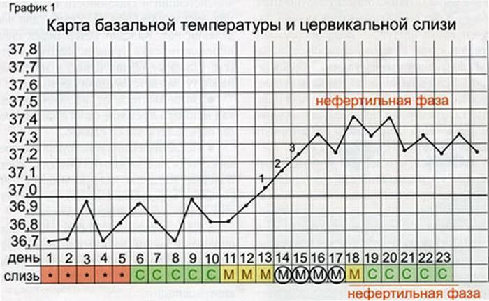 Как измерить базальную температуру для определения овуляции. как измерить базальную температуру для определения беременности