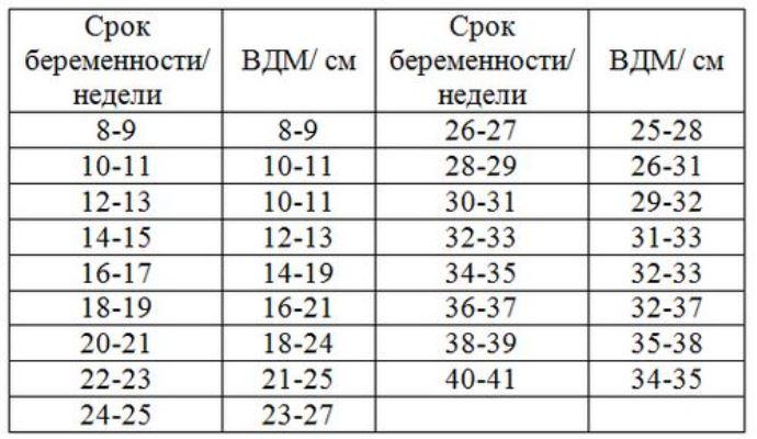 Таблица окружность живота плода по неделям таблица