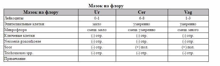 Лейкоциты в мазке при беременности: какие нормы, и что делать, если повышены / mama66.ru