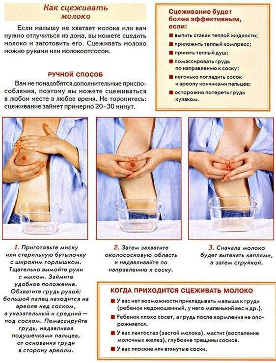 Капустный лист при болезнях груди: лечение мастопатии, мастита, лактостаза и болей в молочной жеезе
