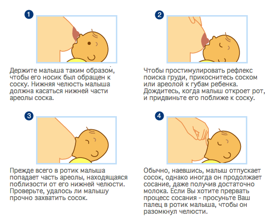 Рекомендации по тому, как прикладывать младенца к груди