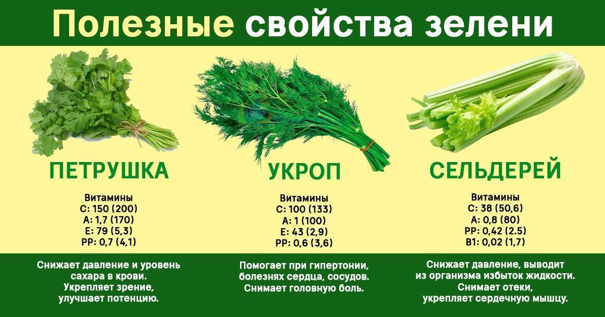 Зелень при грудном вскармливании. можно ли кормящей маме зелень