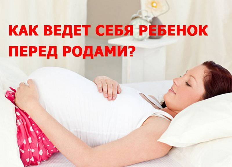 Роды: что происходит с ребенком во время схваток и потуг. как ребенок проходит по родовым путям во время родов?