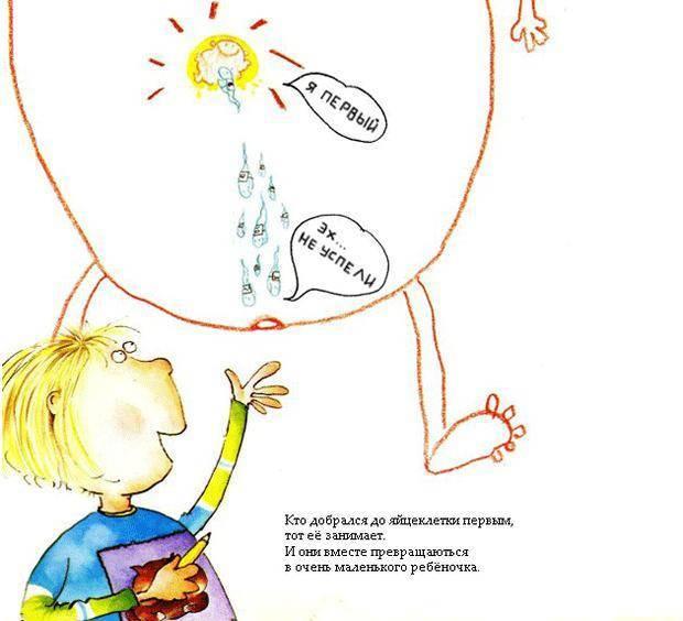 Как объяснить ребенку откуда берутся дети — видео-совет, мультик, список книг