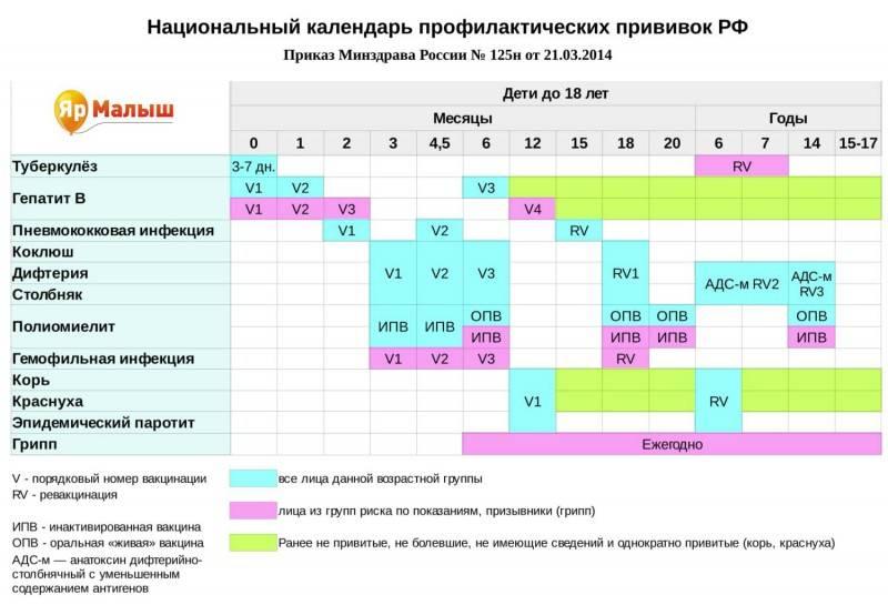 График вакцинации в первый год жизни ребенка согласно календарю ? плановых прививок