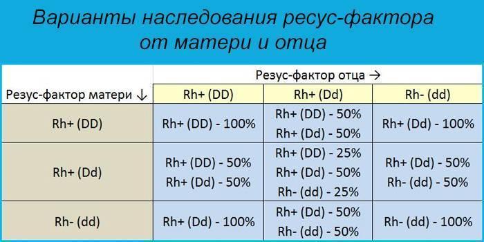 Как наследуется резус фактор у человека: какой должен быть, таблица резус-фактора родителей и детей