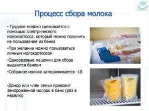 Опасен ли золотистый стафилококк в молоке при грудном вскармливании