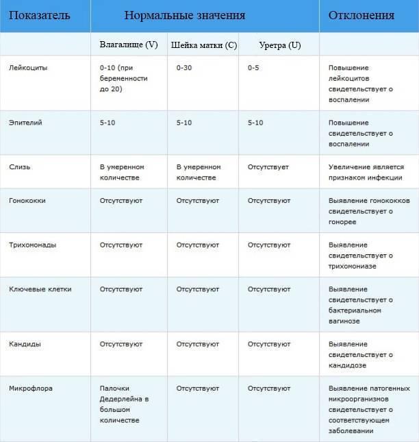 Лейкоциты при беременности: причины повышения, особенности и критерии нормы