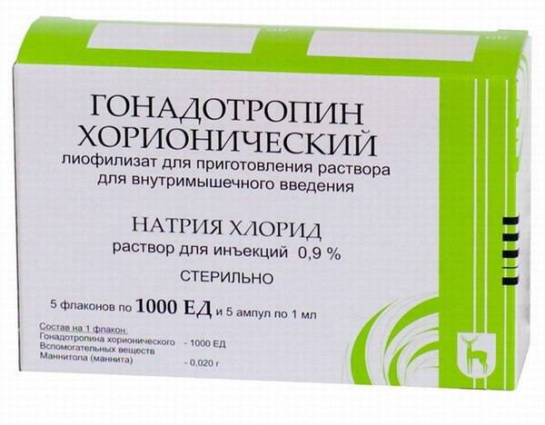 Гонадотропин хорионический – описание, применение, отзывы