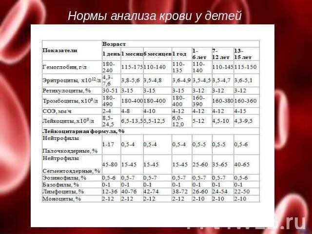 Можно ли кормить младенца перед сдачей крови и как дети сдают кровь из пальца, натощак или нет, можно ли кушать ребёнку перед процедурой stomatvrn.ru