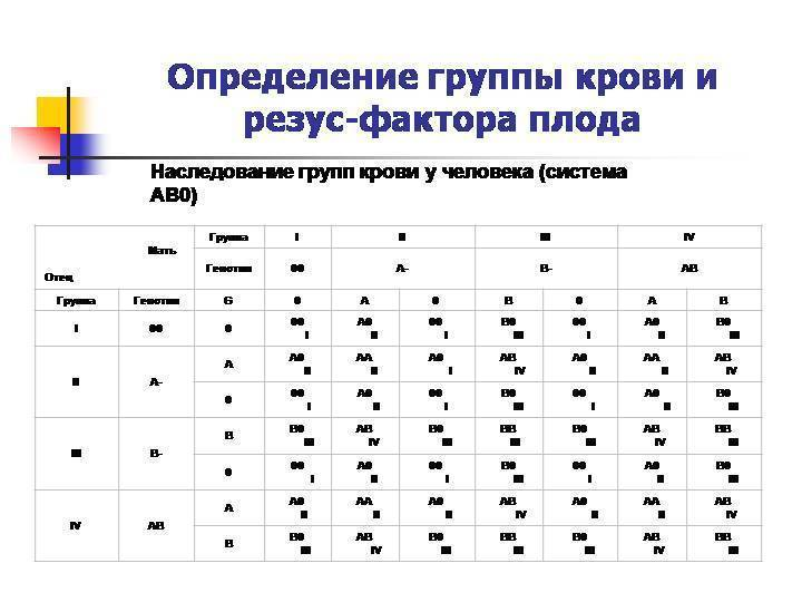 Анализ на определение резус фактора плода по крови матери