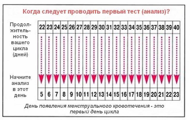 Можно ли забеременеть после овуляции: через сколько дней это возможно?