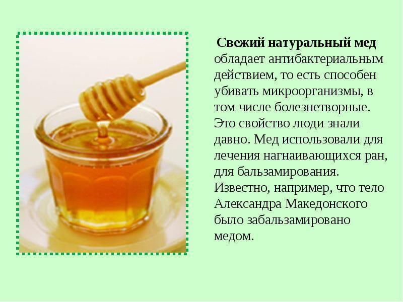 Мёд во время беременности