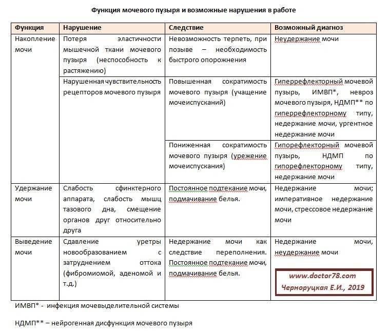 Лечение нейрогенной дисфункции мочевого пузыря у детей | moninomama.ru