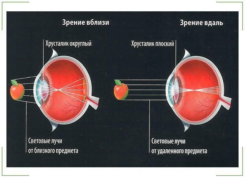 """Глазные капли для снятия спазма аккомодации - """"здоровое око"""""""