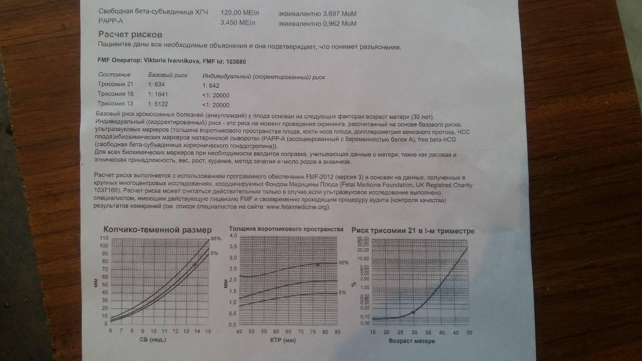 Анализ крови на хгч при беременности