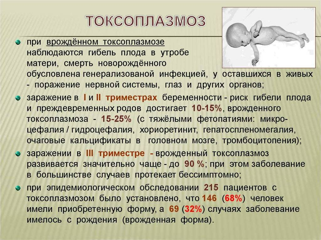 Лечение токсоплазмоза у детей. токсоплазмоз: симптомы у детей. диагностика и лечение токсоплазмоза   здоровье человека