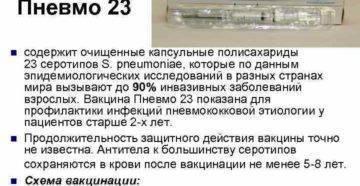 Пневмовакс 23 вакцина: показания, инструкция по применению