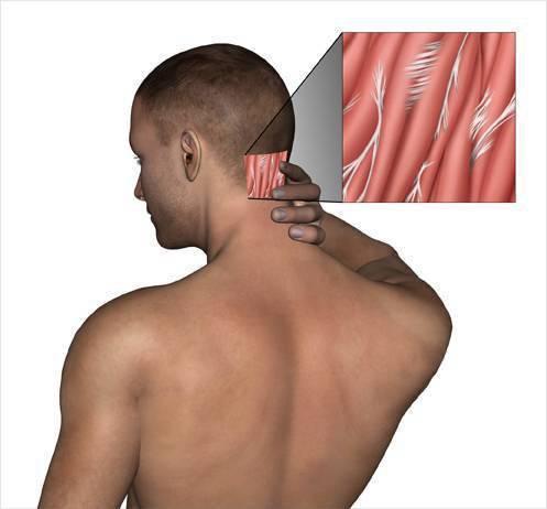 Болит шея у ребенка сзади или с одной стороны, он не может поворачивать голову – что делать?