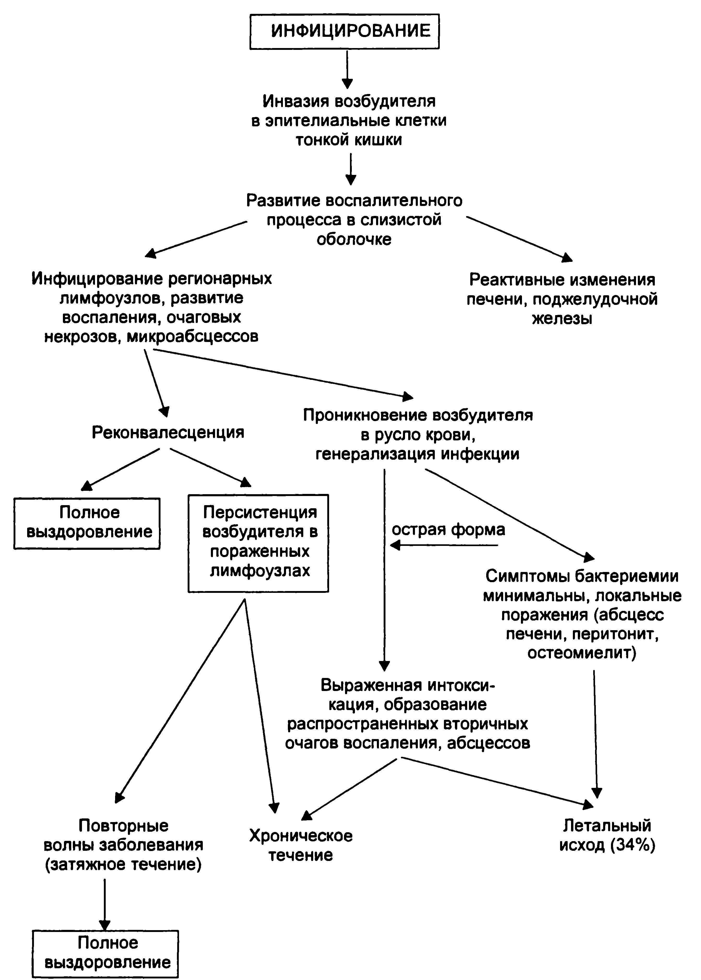 Иерсиниоз - симптомы, лечение, диагностика, профилактика иерсиниоза