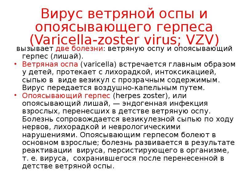 Вирус герпеса 3 типа (герпес зостер, или опоясывающий лишай)