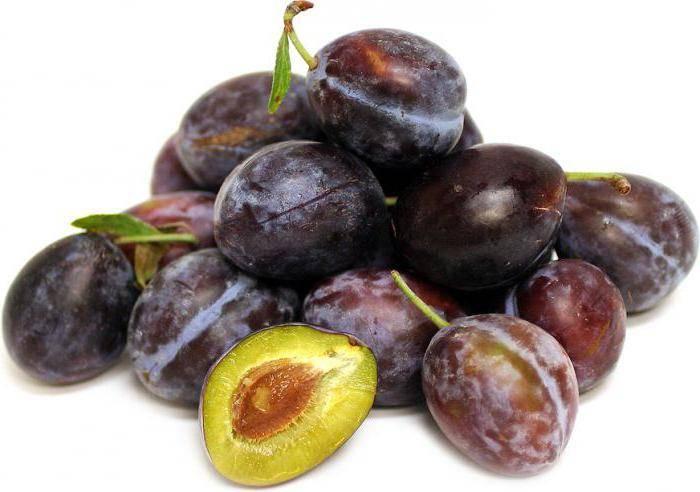 Ребенок проглотил косточку от сливы, финика, чернослива, вишни - что делать? | симптомы | vpolozhenii.com