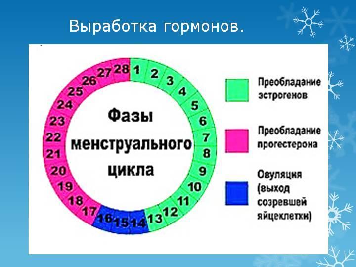 За сколько дней до овуляции можно забеременеть: правильные дни