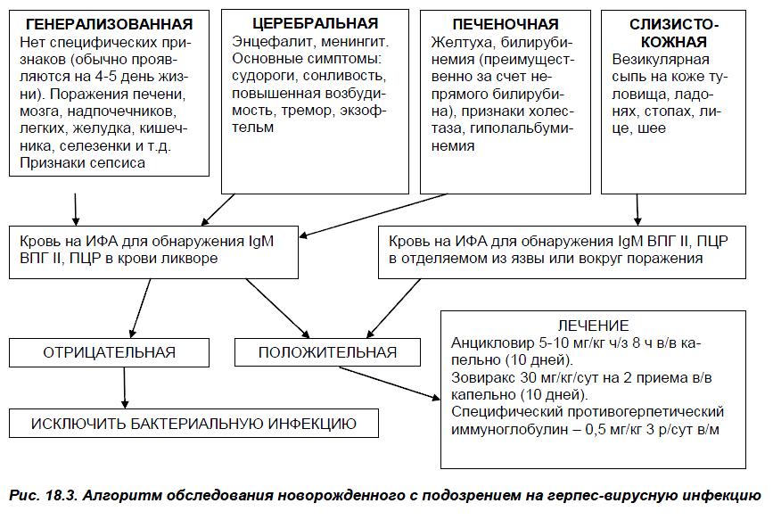 Как протекает детский цитомегаловирус?