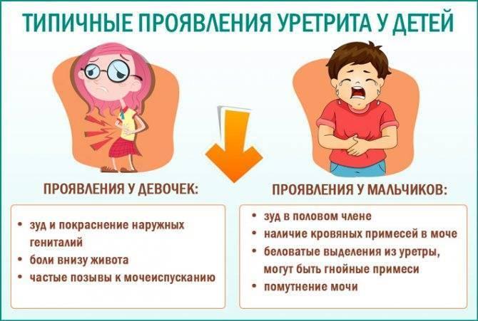 Цистит у мальчиков: симптомы и лечение (3, 5, 9 лет)