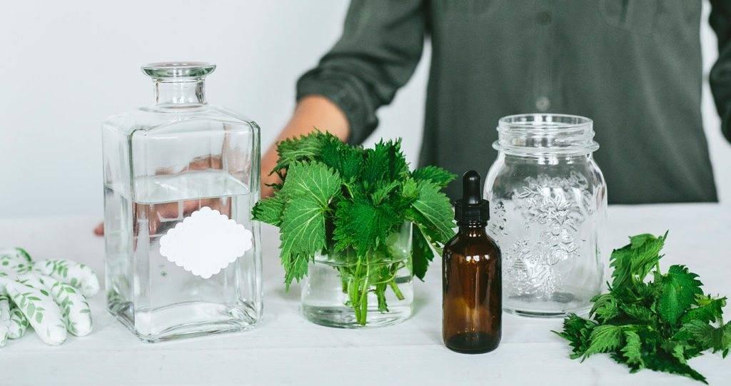 Лавровый лист от аллергии и диатеза избавит за 2 процедуры! рецепты тут!