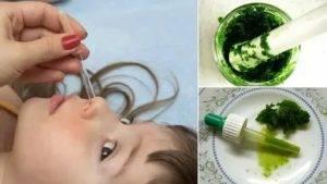 Алоэ от насморка для детей (капли в нос): готовим сок самостоятельно