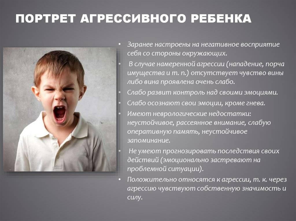 Агрессивный ребенок: почему, что делать, агрессивное поведение в детском саду