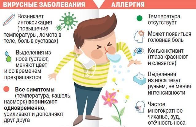 Симптомы, лечение и профилактика аллергического ринита у ребенка