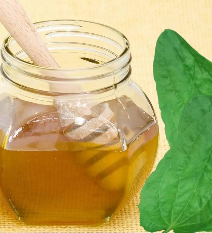 Народные средства от кашля для взрослого: рецепты настоек
