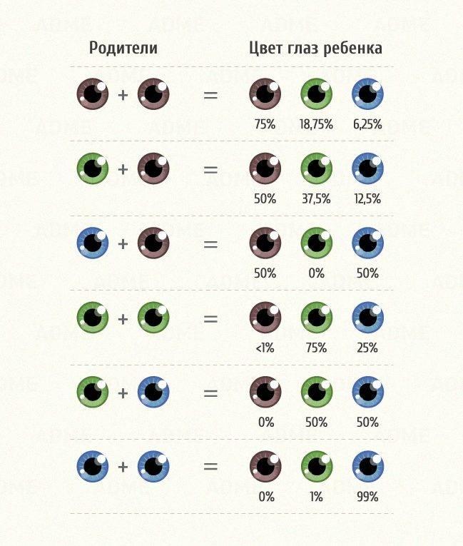 Какие глаза доминируют — голубые или карие. какой цвет глаз будет у новорожденного ребенка, если у родителей они карие, голубые или зеленые? цвет глаз доминантный и рецессивный таблица - врач-информ