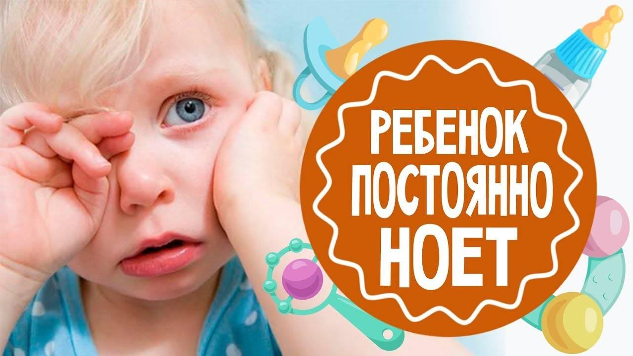 Ребенок постоянно скулит. ребенок ноет и плачет по любому поводу: что делать и как отучить малыша от «вредной привычки»? должна ли я сразу взять его на руки