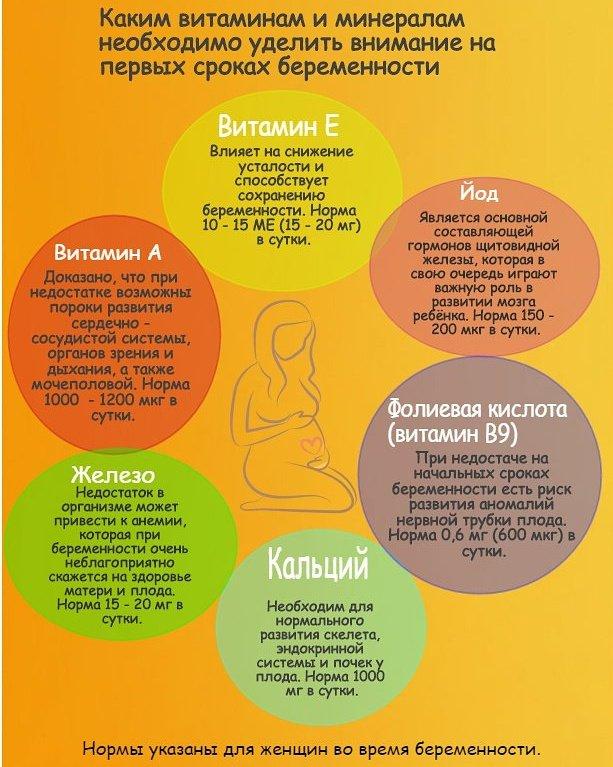 Календарь беременности. 12-я акушерская неделя