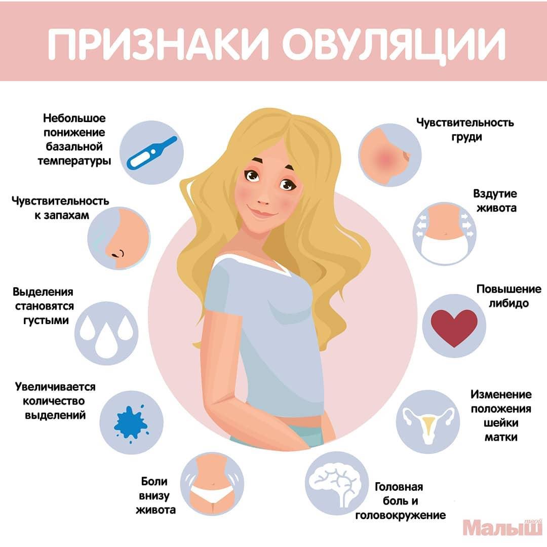 Первые недели беременности: что нужно знать и делать, что можно и нельзя, что происходит с малышом?