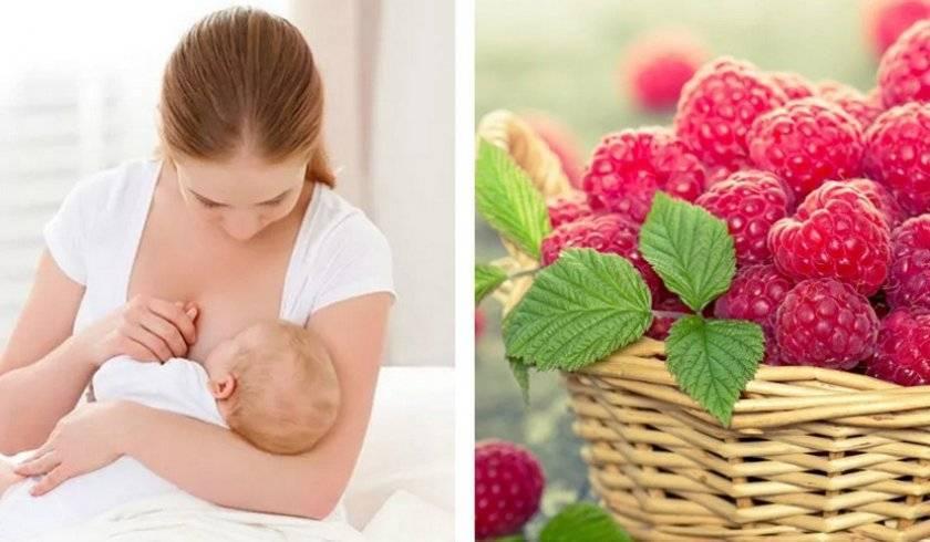 Какие овощи и фрукты можно кушать на гв: время и особенности введения плодов в рацион кормящей мамы