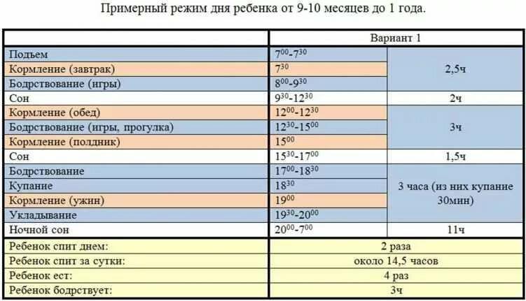 Режим дня ребенка в 11 месяцев: питание, сон, распорядок по часам