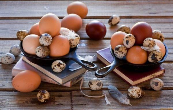Можно ли кормящей маме кушать яичницу и омлет — польза куриных и перепелиных яиц при грудном вскармливании