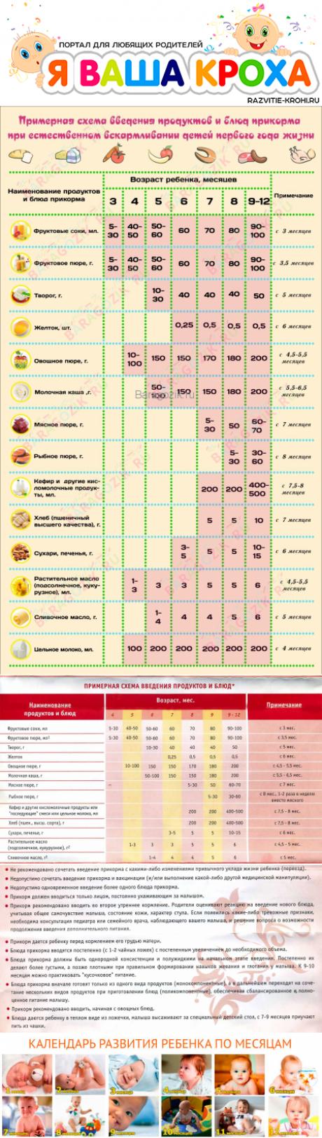 Педагогический прикорм при грудном вскармливании - правила, полезная информация!